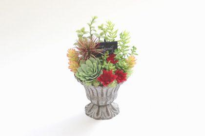 多肉植物とハーブのアレンジメント1